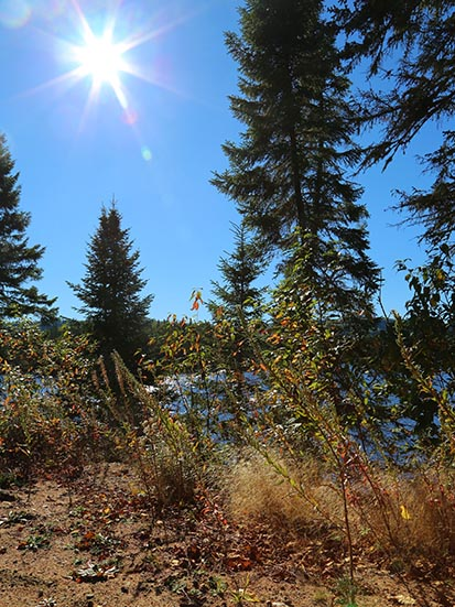 Sentier en montagne - Laissez vous transporter dans nos magnifique sentier en montagne.